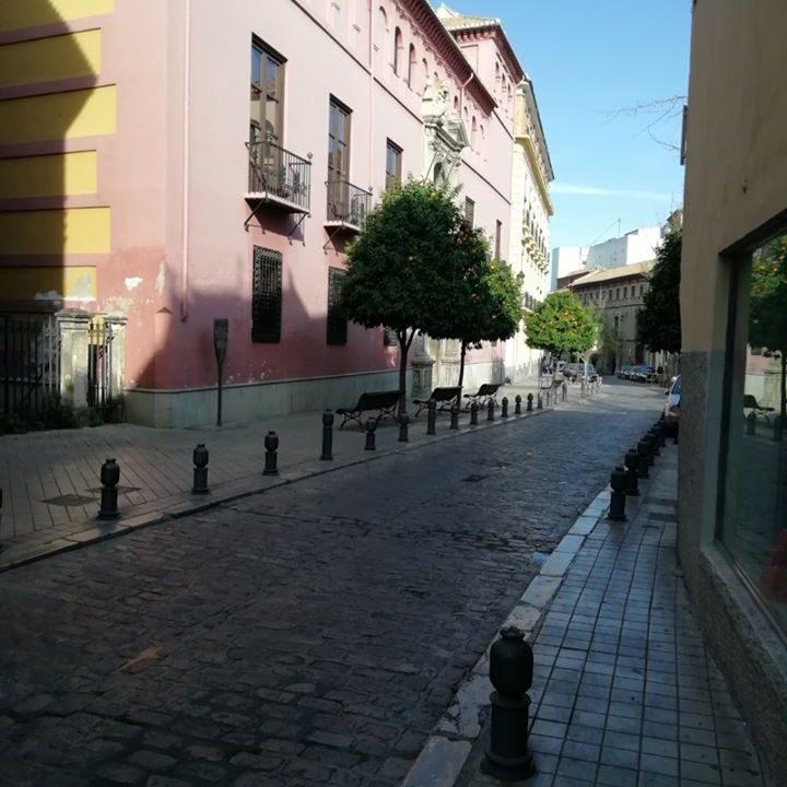 Real Colegio Mayor San Bartolomé y Santiago durante la Cuarentena